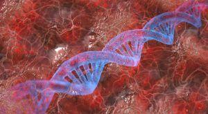 Estudi genètic Lipid inCode